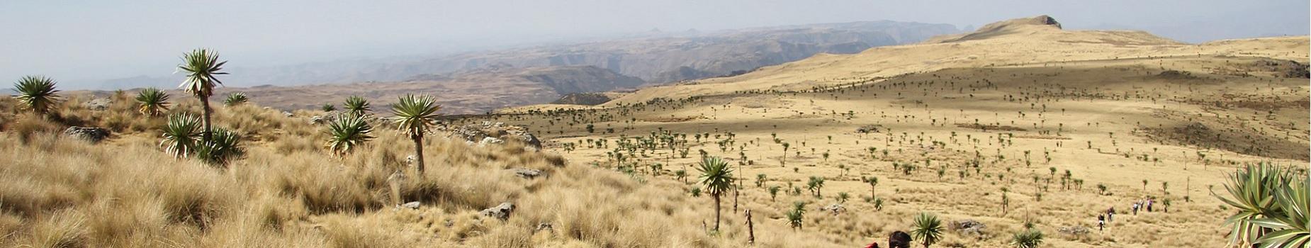 Vliegvelden Ethiopië