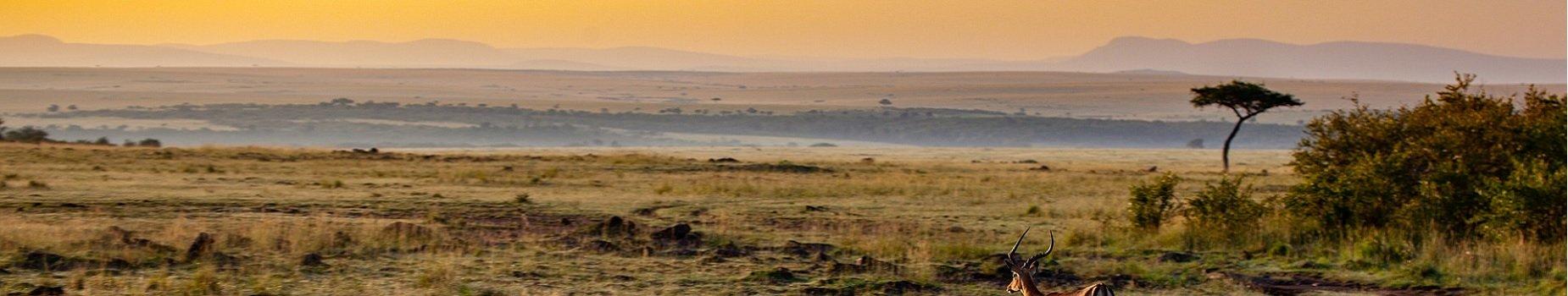 Vliegvelden Kenia