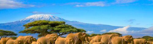 handige informatie reis kenia